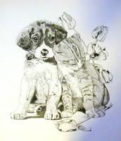 Puppy and Kitten by BeckyLiv