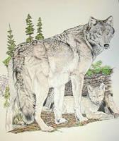 Wolf by BeckyLiv