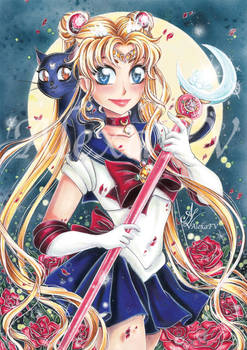 Sailormoon and Luna