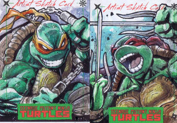 Raphael and Mikey Sketch Cards by emilcabaltierra