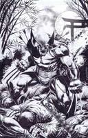 Wolverine by emilcabaltierra