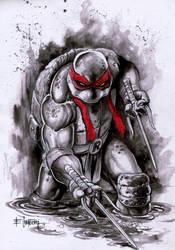 Raphael by emilcabaltierra
