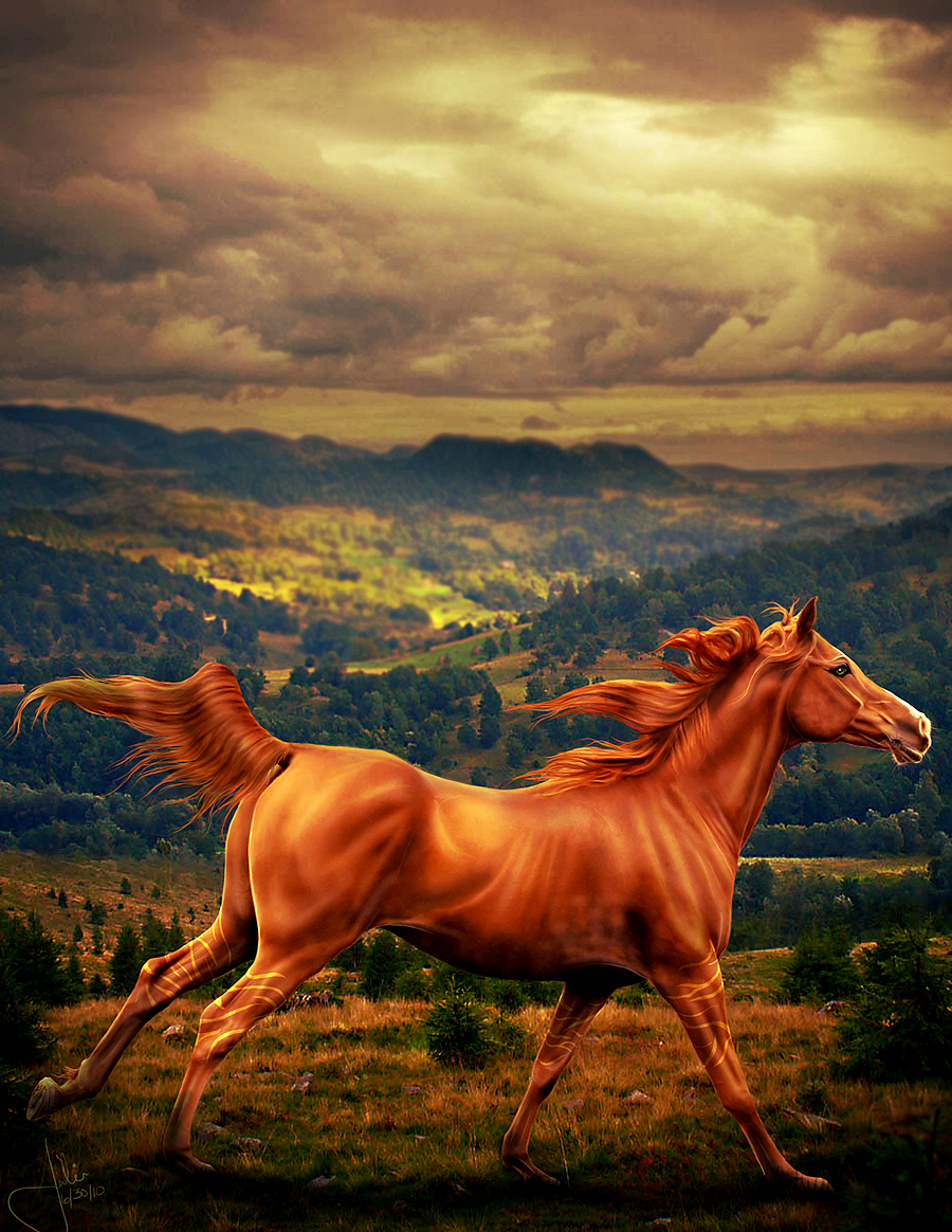 ^ Twilightstars ^ horses Hysteric_by_Rimfy