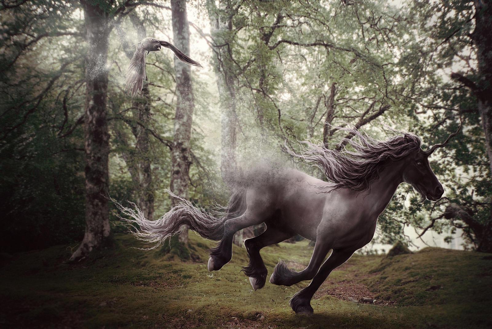 Silver Soul by Rimfy