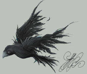 Journal Crow by kchilt