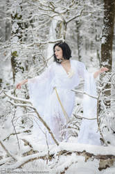 A Winter Fairy Tale by MandragorPhotography