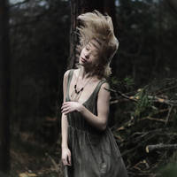 wild winds by collien