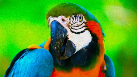 ColorSplash by DPCloud01
