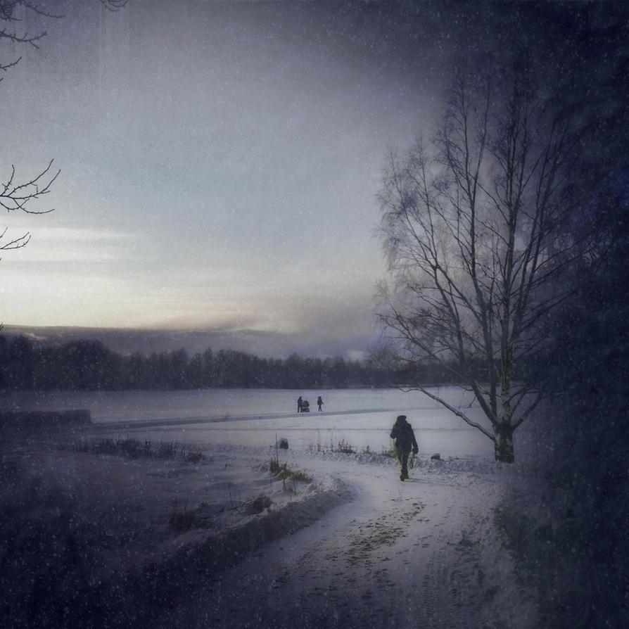Winter Walk by Amalus