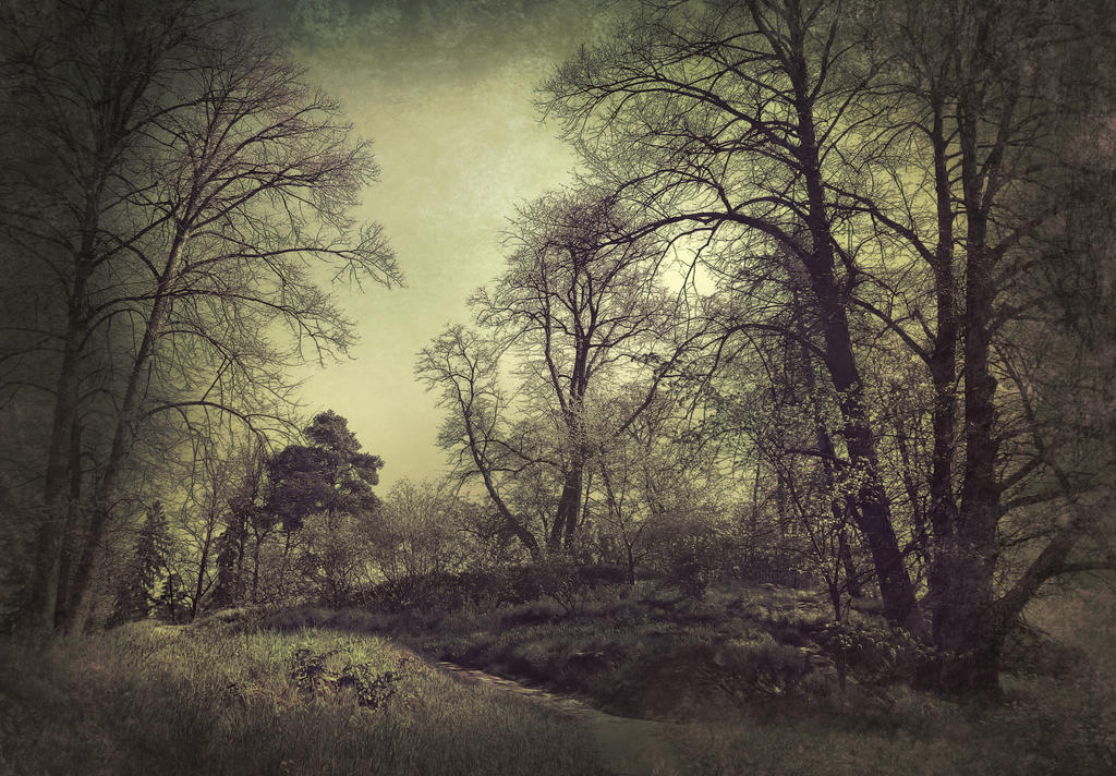 a hill by Amalus