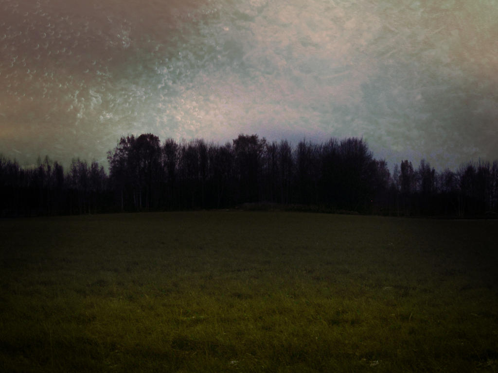 Dreaming Field by Amalus