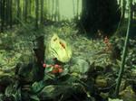 Woodland 6 by Amalus