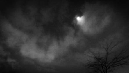 A Night with The Moon by Amalus