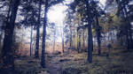 forest 58 by Amalus