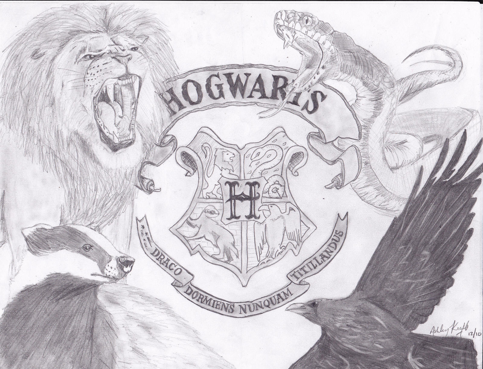 Image Result For Slytherin Coloring Pages