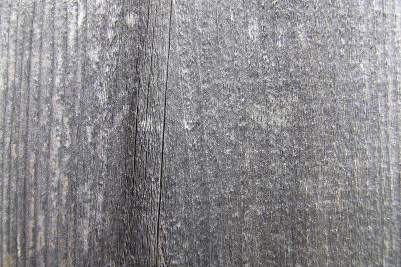 Wood Texture 2 by Mifti-Stock