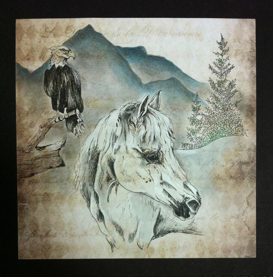 White Horse by Alyx-Hundo