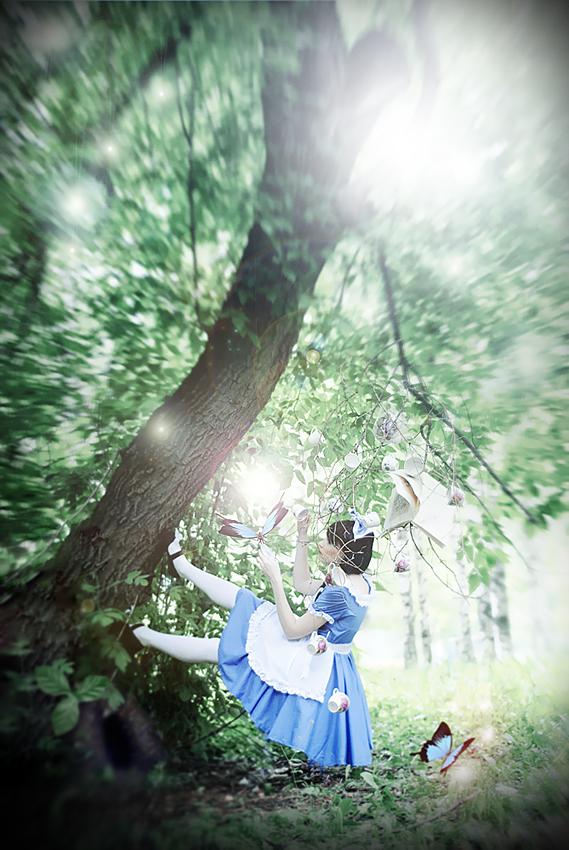 Welcome to Wonderland by Push-sama