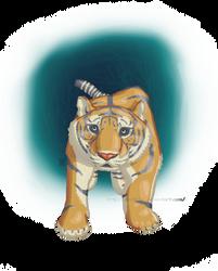 portal tiger by starlo1o1