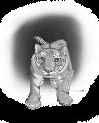 Portal Tiger (b+w) by starlo1o1