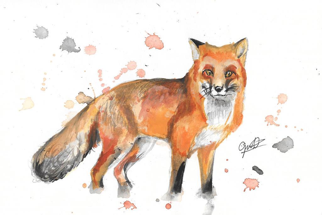 Red Fox by Gotashi-Chan