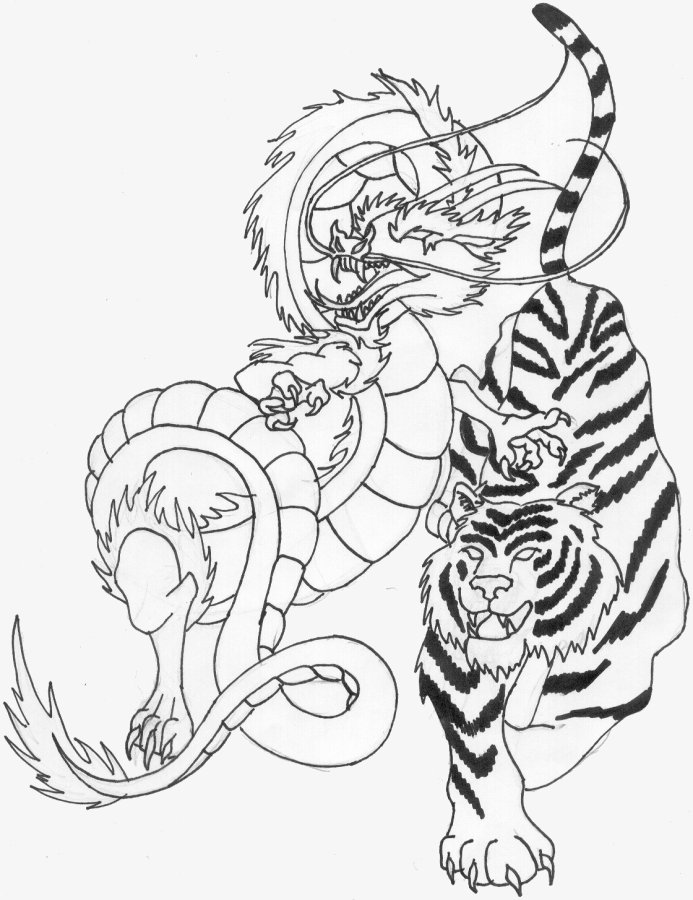 drawings of dragons and tigers