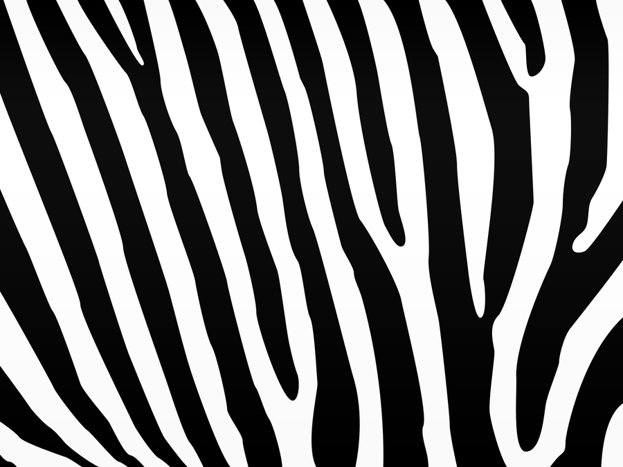 Zebra Desktop Background by OuterSpice on DeviantArt