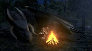 The Wild Camping