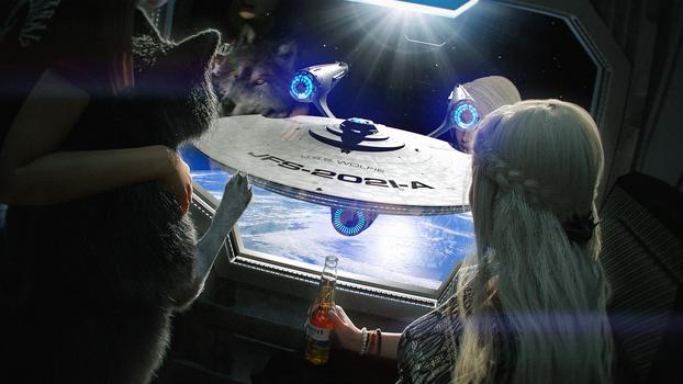 The Starship