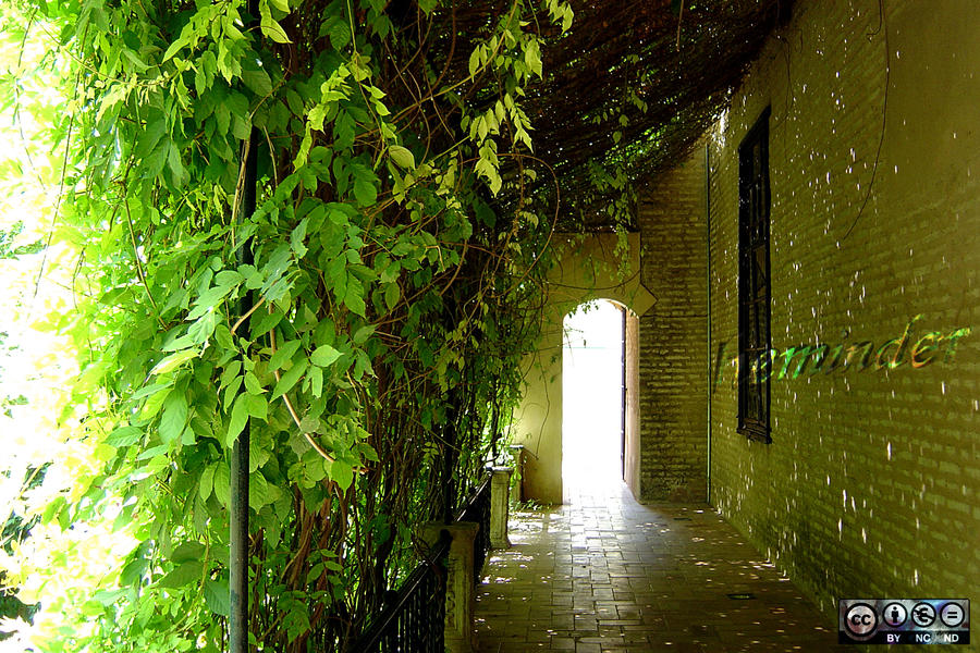 Sunlit Archway by heminder