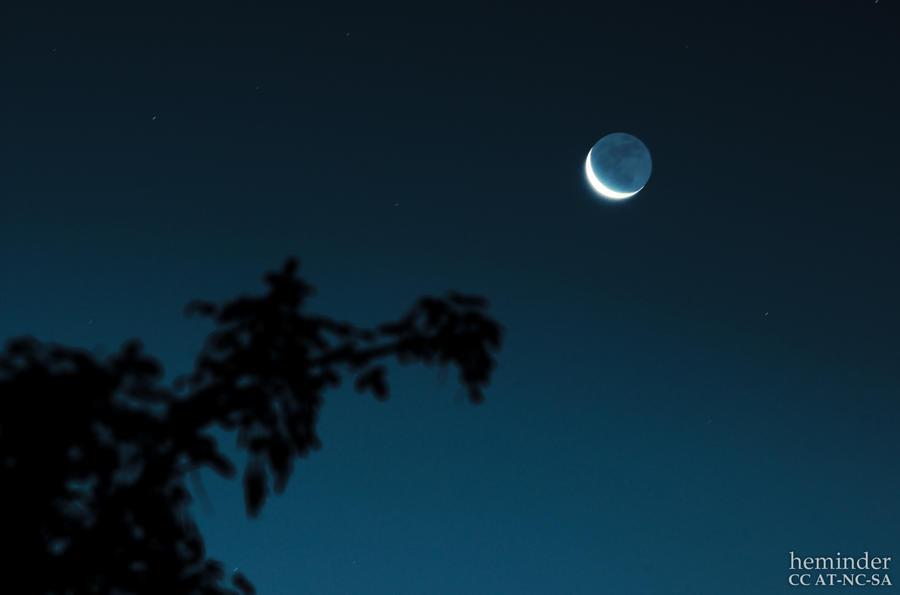 Lunar by heminder