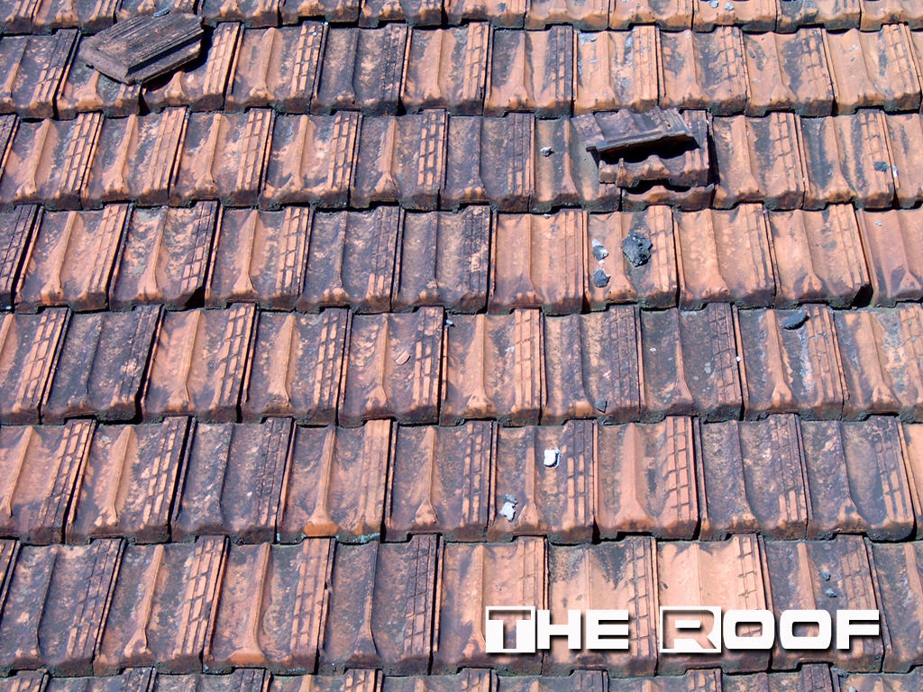 download roof wallpaper gallery
