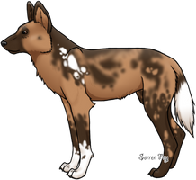 Painted Wild Dog by SorrenFey