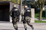 SWAT II