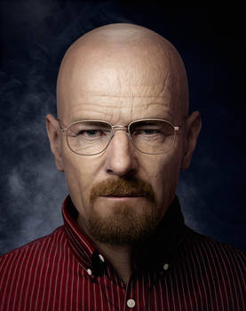 I AM THE DANGER - Walter White portrait