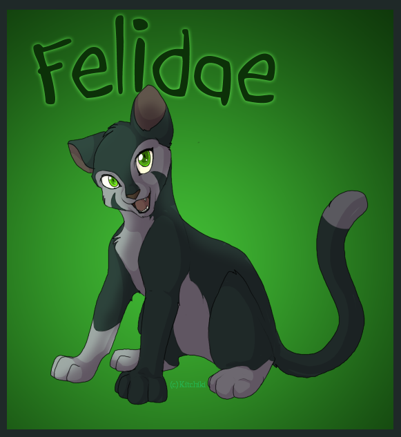 felidae - photo #28