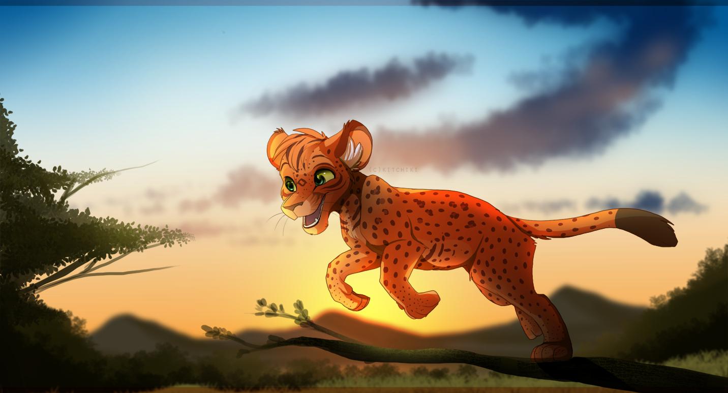 Evening Explorer by Kitchiki