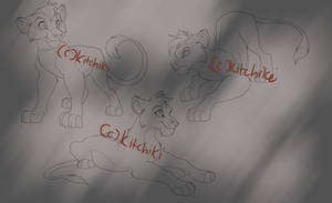 Outlander cub lines -points- by Kitchiki
