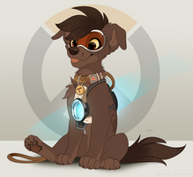 Tracer Pup