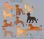 TLK style Lioness Adoptables -CLOSED-