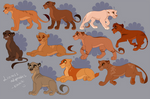 TLK Style Lioness Adoptables -lot 3-