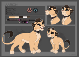 Aarron-Reference commission by Kitchiki