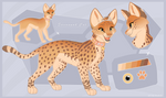 Savannah Cat -Design Auction-