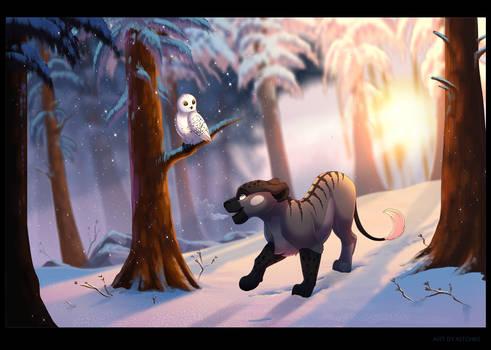 Winter Morning by Kitchiki