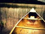 One of Many Canoe Trips