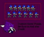 Custom Sonic Pose