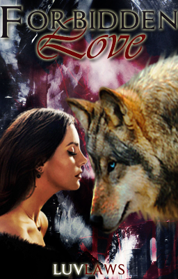 A Forbidden Love Cover by doraemannnn