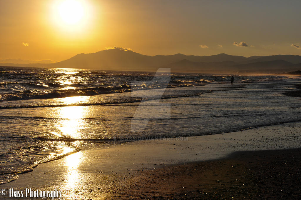 The beach by 1Bass