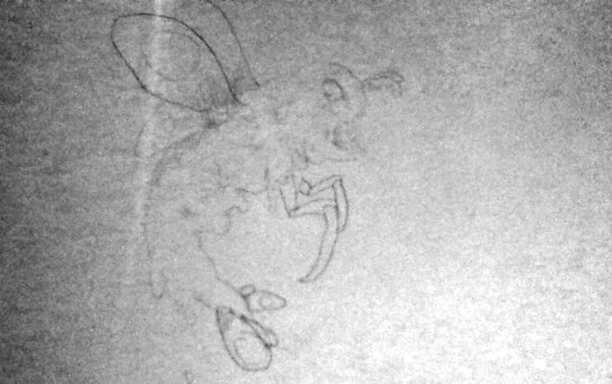 Muckmoth Sketch by Shnurbinator