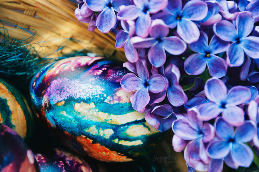 Easter eggs and lilac by Snowflake-Photo